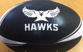 hawks custom ball