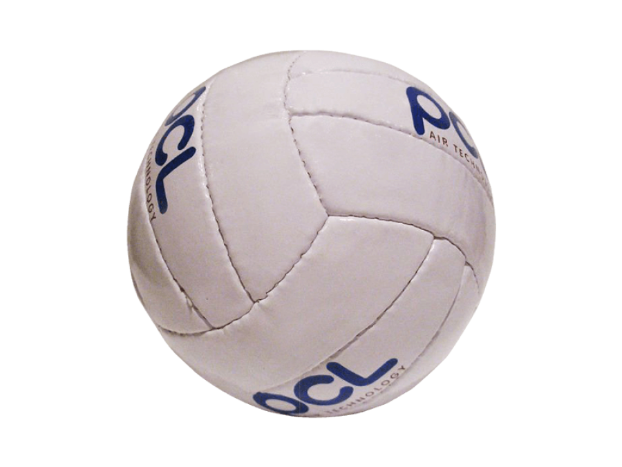 branded-volleyball